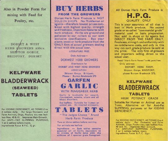 1960; Archive product labels for Kep Seaweed Tablets and Garlic Tablets, two products we still produce today!