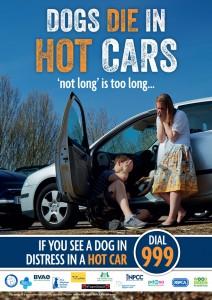DogsInHotCars_Poster