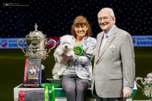 Want to know more about grooming dogs? Meet Marie & Devon, Crufts Best In Show winner 2016!