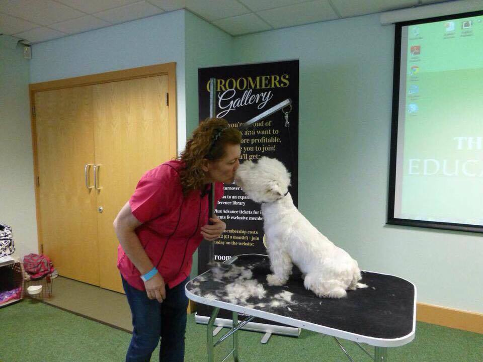 Want To Know More About Grooming Dogs Meet Marie Devon Crufts